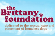 The Brittany Foundation Animal Sanctuary