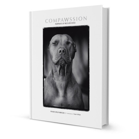 Compawssion: Portraits Of Rescued Dogs By Frank Bruynbroek