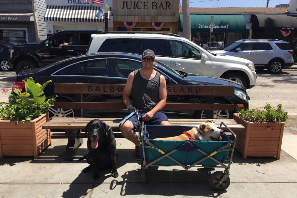 Henry in his wagon with Robert and buddy Maxx